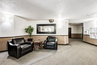 Photo 22: 114 11 Dover Point SE in Calgary: Dover Apartment for sale : MLS®# A1125915