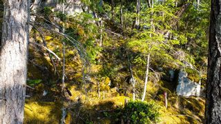 Photo 11: LOT 55 6093 CORACLE Drive in Sechelt: Sechelt District Land for sale (Sunshine Coast)  : MLS®# R2598301