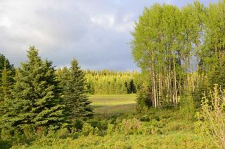 """Photo 12: DECEPTION LAKE FOREST SERVICE ROAD: Telkwa Land for sale in """"WOODMERE"""" (Smithers And Area (Zone 54))  : MLS®# R2398092"""