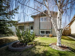 Photo 1: 223 Tanner Drive SE: Airdrie Detached for sale : MLS®# A1101335