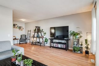 Photo 15: 508 Mckinnon Drive NE in Calgary: Mayland Heights Detached for sale : MLS®# A1154496