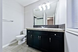 Photo 26: 169 SKYVIEW RANCH DR NE in Calgary: Skyview Ranch House for sale : MLS®# C4278111
