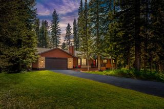 Photo 47: 4 Manyhorses Gardens: Bragg Creek Detached for sale : MLS®# A1069836