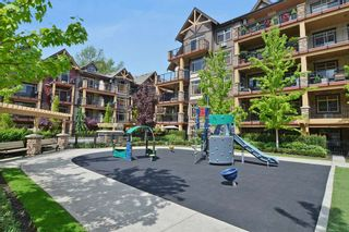 """Photo 15: 416 8328 207A Street in Langley: Willoughby Heights Condo for sale in """"Yorkson Creek"""" : MLS®# R2337768"""