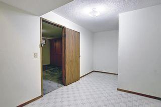 Photo 45: 27 Castlebury Way NE in Calgary: Castleridge Detached for sale : MLS®# A1124500