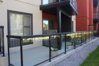 Photo 33: 144 308 AMBLESIDE Link in Edmonton: Zone 56 Condo for sale : MLS®# E4224346