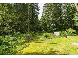 Photo 31: 26027 112 Avenue in Maple Ridge: Thornhill MR House for sale : MLS®# R2476121