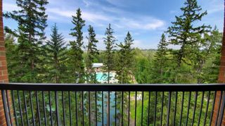 Photo 23: 311 8604 48 Avenue NW in Calgary: Bowness Apartment for sale : MLS®# A1113873