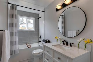 Photo 26: 84 Bermuda Way NW in Calgary: Beddington Heights Detached for sale : MLS®# A1112506