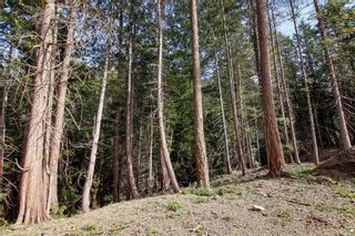 Photo 15: 3614 Jolly Roger Cres in : GI Pender Island Land for sale (Gulf Islands)  : MLS®# 869738