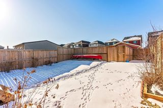 Photo 25: 381 NOLANFIELD Way NW in Calgary: Nolan Hill Detached for sale : MLS®# C4286085