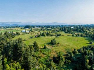 Photo 12: 5571 ROSS Road: Agri-Business for sale in Abbotsford: MLS®# C8036359