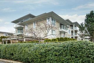 "Photo 26: 214 22255 122 Avenue in Maple Ridge: West Central Condo for sale in ""MAGNOLIA GATE"" : MLS®# R2539586"