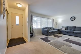 Photo 18: 14211 87 Avenue in Edmonton: Zone 10 House for sale : MLS®# E4223895