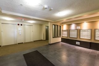 Photo 39: 408 11441 ELLERSLIE Road in Edmonton: Zone 55 Condo for sale : MLS®# E4263361