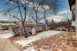 Photo 14: 4624 22 Avenue NW in Calgary: Montgomery Detached for sale : MLS®# A1055200