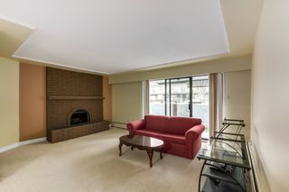 Photo 5:  in Villa Marine: Marpole Home for sale ()  : MLS®# V1095316