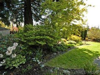 Photo 7: 4453 Casa Linda Dr in VICTORIA: SW Royal Oak House for sale (Saanich West)  : MLS®# 571417