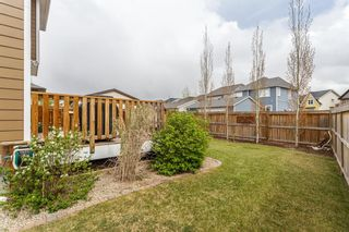 Photo 28: 25 BRIGHTONCREST Rise SE in Calgary: New Brighton Detached for sale : MLS®# A1110140
