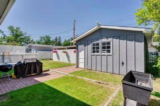 Photo 40: 712 MAPLETON Drive SE in Calgary: Maple Ridge Detached for sale : MLS®# A1018735