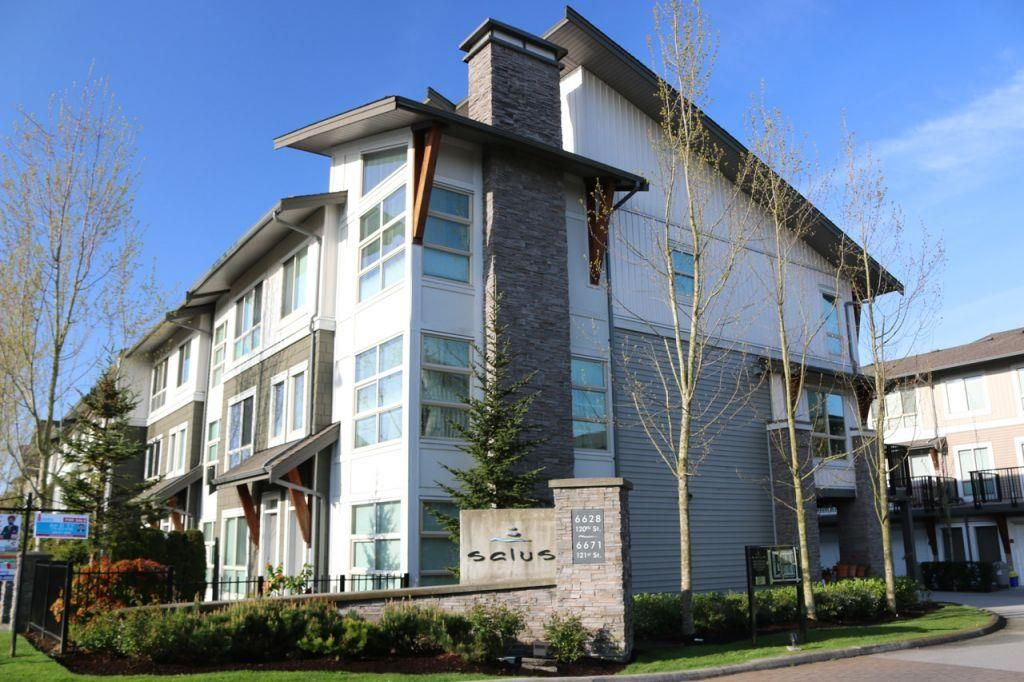 """Main Photo: 28 6671 121 Street in Surrey: West Newton Townhouse for sale in """"SALUS"""" : MLS®# R2138792"""
