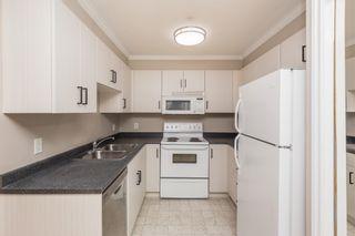 Photo 3: 412 9938 104 Street in Edmonton: Zone 12 Condo for sale : MLS®# E4255024