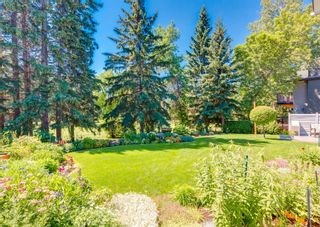 Photo 46: 96 Willow Park Green SE in Calgary: Willow Park Detached for sale : MLS®# A1125591