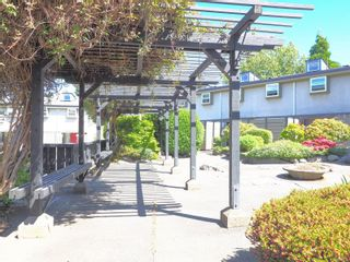 Photo 39: 1511 North Dairy Rd in : Vi Oaklands Row/Townhouse for sale (Victoria)  : MLS®# 878365