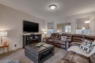 Photo 34: 239 AUBURN SPRINGS Close SE in Calgary: Auburn Bay Detached for sale : MLS®# A1061527