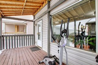 Photo 35: 47 Appleburn Close SE in Calgary: Applewood Park Detached for sale : MLS®# A1049300