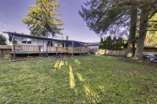 Photo 9: 15344 88 Avenue in Surrey: Fleetwood Tynehead House for sale : MLS®# R2532337