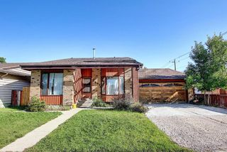 Main Photo: 6843 Temple Drive NE in Calgary: Temple Detached for sale : MLS®# A1141788