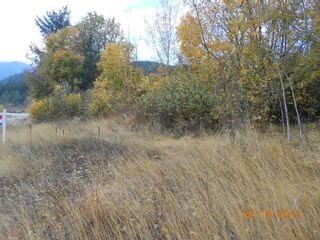 Photo 4: 3 2481 Squilax Anglemont Road in Lee Creek: Land Only for sale : MLS®# 10055686