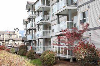 """Photo 12: 212 1203 PEMBERTON Avenue in Squamish: Downtown SQ Condo for sale in """"EAGLE GROVE"""" : MLS®# R2363138"""