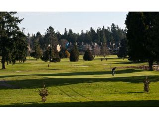 Photo 16: 11 14085 NICO WYND PLACE in Surrey: Elgin Chantrell Home for sale ()  : MLS®# F1433623