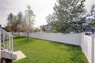 Photo 35: 203 Cranberry Park SE in Calgary: Cranston Row/Townhouse for sale : MLS®# A1111572