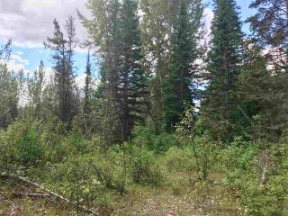Photo 10: LOT 10 ISLAND PARK Drive in Prince George: Miworth Land for sale (PG Rural West (Zone 77))  : MLS®# R2388123