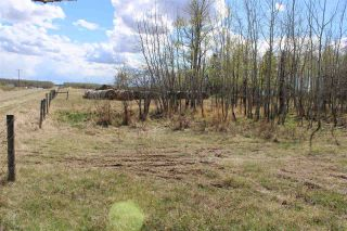 Photo 13: 57032 RR 50: Rural Lac Ste. Anne County Rural Land/Vacant Lot for sale : MLS®# E4244016