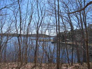 Photo 5: Lot 1 Highway 331 in Conquerall Bank: 405-Lunenburg County Vacant Land for sale (South Shore)  : MLS®# 202107962