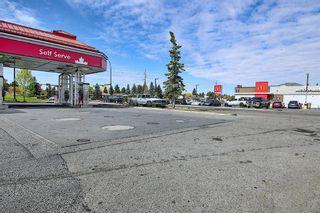 Photo 49: 1711 65 Street NE in Calgary: Pineridge Detached for sale : MLS®# A1038776