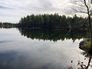 Photo 1: Lot 1 Virginia Road in West Springhill: 400-Annapolis County Vacant Land for sale (Annapolis Valley)  : MLS®# 202024712