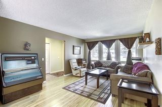 Photo 11: 408 QUEENSLAND Circle SE in Calgary: Queensland Detached for sale : MLS®# A1020270