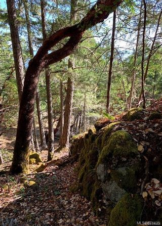 Photo 18: LOT B Wilderness Pl in : Sk Becher Bay Land for sale (Sooke)  : MLS®# 871435