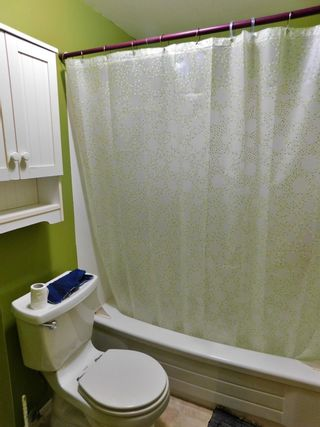 Photo 22: 35 Birch Drive: Gibbons House for sale : MLS®# E4249025