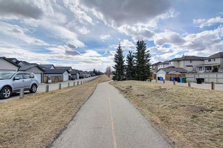 Photo 47: 87 Taravista Street NE in Calgary: Taradale Detached for sale : MLS®# A1084185