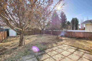 Photo 19: 3519 13 Avenue in Edmonton: Zone 29 House for sale : MLS®# E4238618
