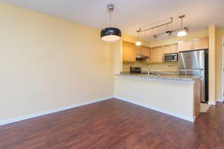 Photo 7: 505 827 Fairfield Rd in Victoria: Vi Downtown Condo for sale : MLS®# 884957