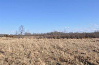 Photo 27: 10 57126 Range Road 12: Rural Barrhead County Rural Land/Vacant Lot for sale : MLS®# E4241768