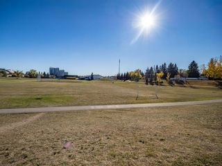 Photo 31: 407 495 78 Avenue SW in Calgary: Kingsland Apartment for sale : MLS®# A1151146