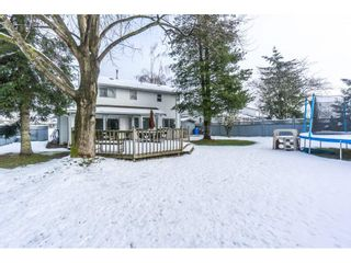 Photo 18: 32500 QUALICUM Place in Abbotsford: Central Abbotsford House for sale : MLS®# R2240933
